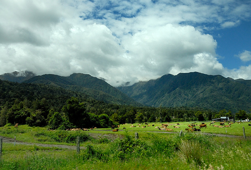 Countryside south of Te Taho