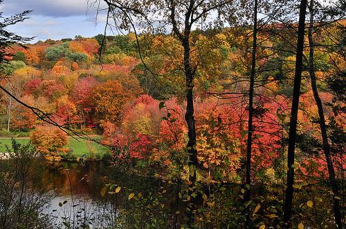 Valley Falls Park